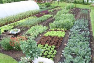 Gardens Directory
